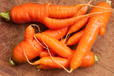 misshapen: farm fresh ugly carrots bent and twisted