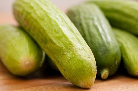 mini farm: organic mini cucumbers from a small farm, sustainability