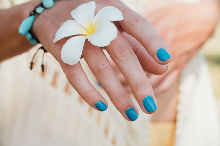 subtropical: White plumeria Flower on hand With a turquoise bracelet.