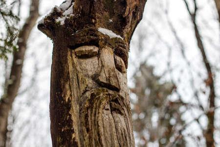 Veles - Slavic pagan idol on the forest temple. Kaluzhskiy region