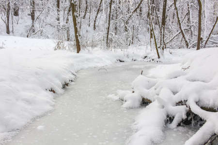 An ice covered little stream in the winter forest covered with snow. Repinka river in Obninsk, Russia Archivio Fotografico