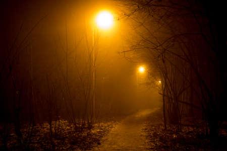A footpath and a dense fog at night, foggy evening