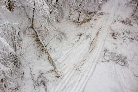 Broken tree after a heavy snowfall in winter, top view