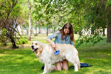 pure breed: A young girl cares for dog fur outdoors. The content of Labrador. The owner of a pure breed dog fur golden retriever. The pleasure and the joy of hygiene.