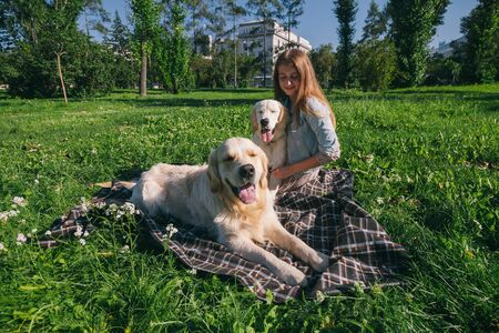 Girl with two golden retriever dogs in a park Standard-Bild - 132304450