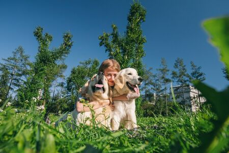Girl with two golden retriever dogs in a park Standard-Bild - 132304456