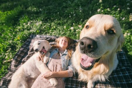 selective focus beautiful girl hugs two golden retriever and smiling sitting on a meadow Standard-Bild - 132304464