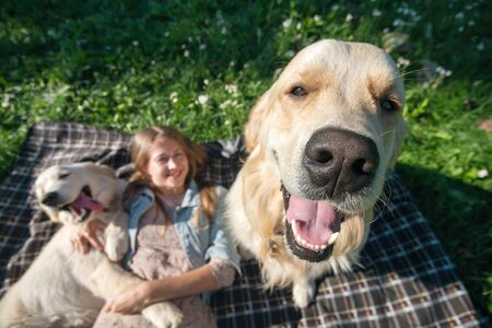 selective focus beautiful girl hugs two golden retriever and smiling sitting on a meadow Standard-Bild - 132304465