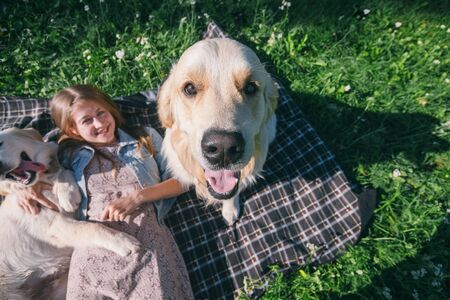 selective focus beautiful girl hugs two golden retriever and smiling sitting on a meadow Standard-Bild - 132304471