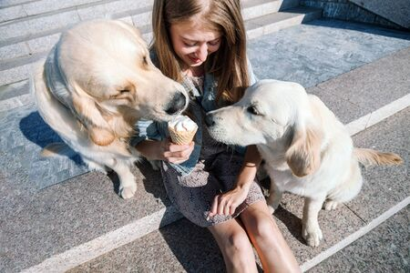 A young girl feeds her dogs ice cream in a park on a hot summer day. Standard-Bild - 132304527