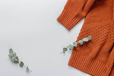 Winter composition. Orange sweater and a branch of eucalyptus on a white background. Autumn, winter concept. Flat lay, top view, copy space