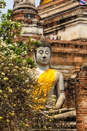 Old Buddha, Ayutthaya photo