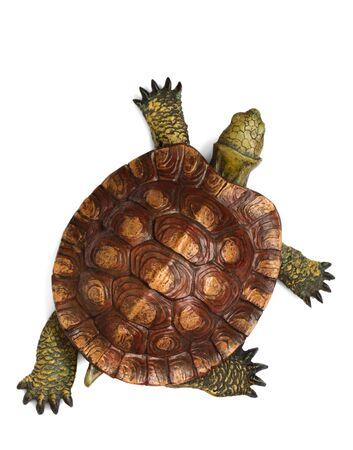 green turtle: Wooden turtle