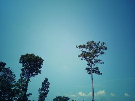 Abstract sky background Reklamní fotografie