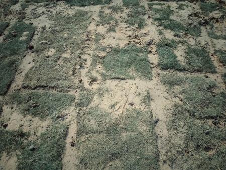 Asphalt concrete road surface