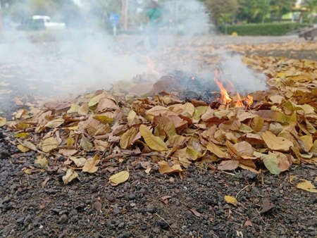Burning leaves and debris Cause pollution PM2.5 免版税图像