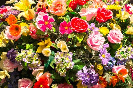 flesh colour: a lot of colour beautiful flesh flower