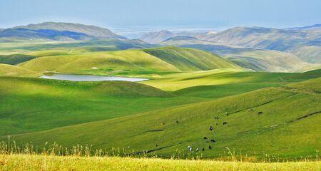 Ushkonyr Lake photo