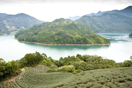 a beautiful scenery include mountains and river and teagarden photo