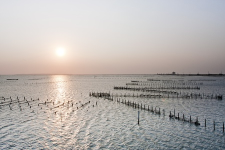 beautiful sunset in Taiwan at a Oyster Farm in Tainan photo