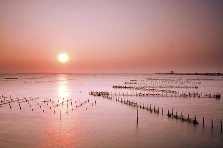 beautiful sunset in Taiwan at a Oyster Farm in Tainan
