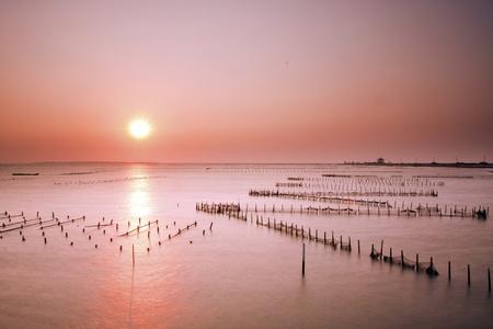 beautiful sunset in Taiwan at a Oyster Farm in Tainan