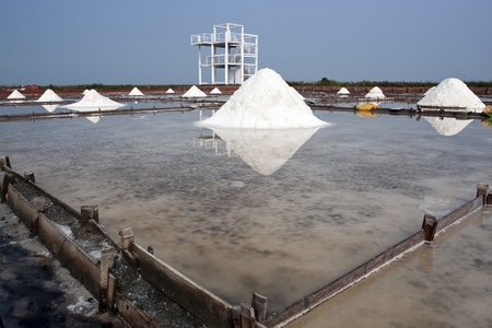 reflects: beautiful landscape of a summer with a salt farm in Tainan