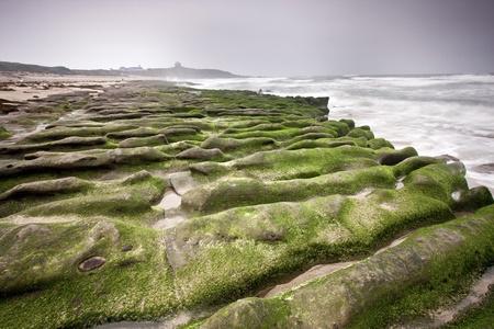 spring scenic of green rock beach in Taiwan photo