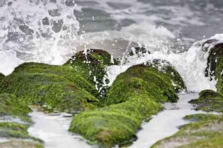 stunning view of surf on green rock at beach in spring,Taiwan photo