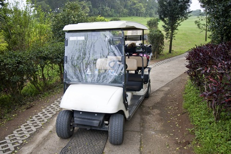 Tropical Golf Cart parking on road photo