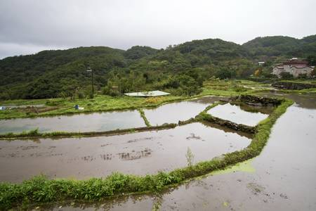 rural scenery of terraced field photo