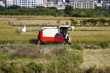 Farmer is working in rice farm with working machine, Taiwan Stock Photo - 17100840