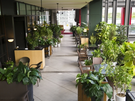 corridor with plants and funitures in the modern city mall building Standard-Bild