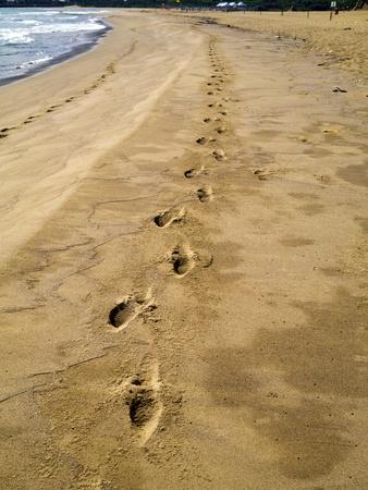 adult footprint: Footprints in sand at tropical beach