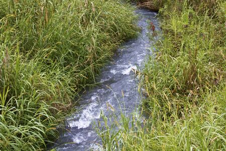 irrigation: Canal supply water in irrigation Stock Photo