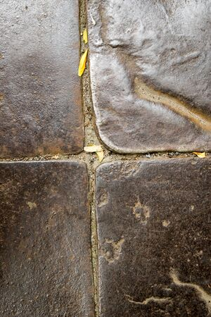 weed block: Ancient metal floor of the castle - background abstract Stock Photo