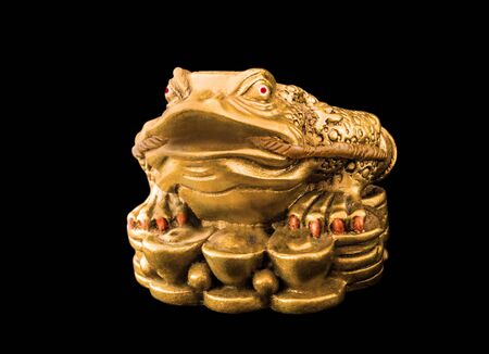 curio: Chinese Feng Shui Frog with coins, money,  symbol of abundance and luck, dollar, euro isolated on black Stock Photo