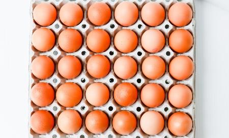 Chicken Eggs row pattern background photo