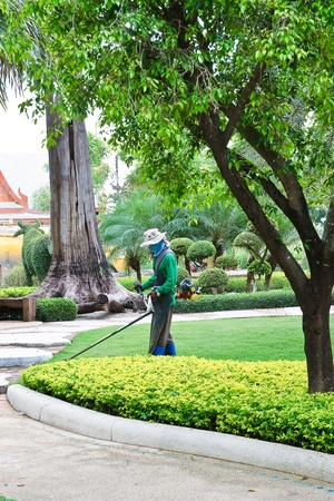 People are cutting the grass. Editorial