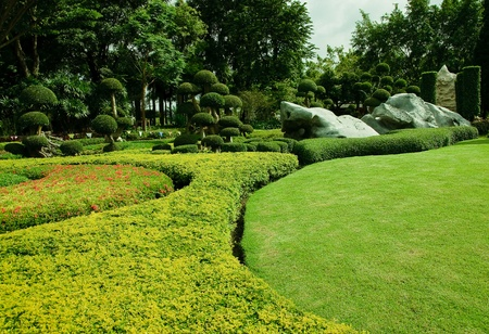 Garden with lawn.