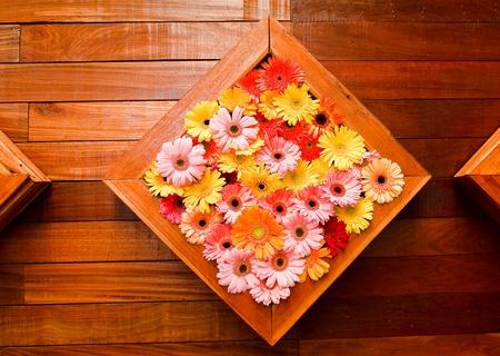 marigolds photo