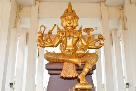 Brahma photo