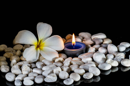scented: Plumeria flowers scented candles