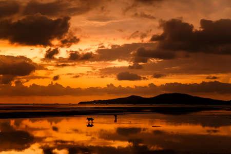 atmosfera: ambiente en la salida del sol en la playa