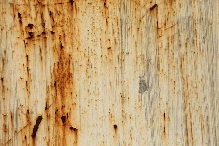 rusty old steel door set in outdoor Stock Photo - 14971081