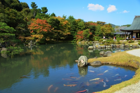 Tenryuji is the most important temple in Kyoto photo