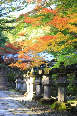 Nikko and the area around Lake, in particular, are well known for their beautiful autumn colors Stock Photo - 16493643