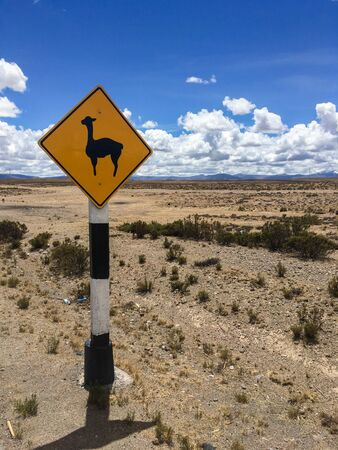 Llama or alpaca road Sign on the Desert Highway, andes, south america