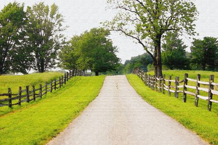 tree lined street: fence lined country road (painted look)