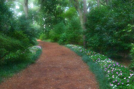 未知の世界に戻ってつながる夢のような庭のパスを招待 写真素材 - 633411